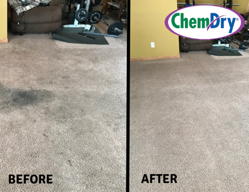 Carpet Cleaning Before Amp After Photos Viking Chem Dry